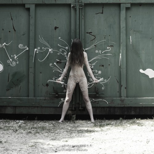 arianna_aiello_container_10