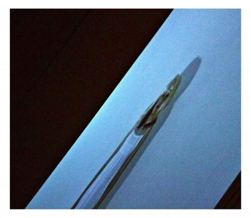 insideyou_foto_mostra_blog_02
