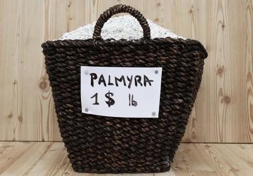 palmyra_chiurato_01
