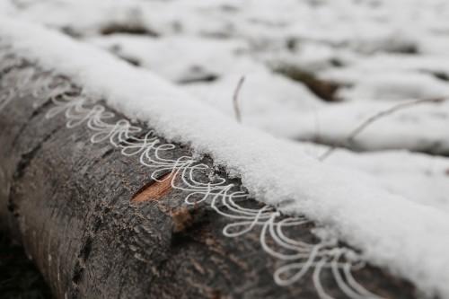tronco_neve_09