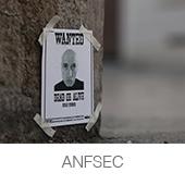 ANFSEC copia