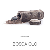 BOSCAIOLO copia