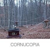 CORNUCOPIA copia