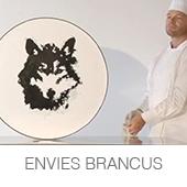 ENVIES BRANCUS copia