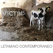 LETAMAIO CONTEMPORANEO copia