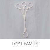 LOST FAMILY copia