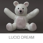 LUCID DREAM copia