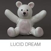 LUCID DREAM copia