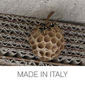 MADE IN ITALY copia