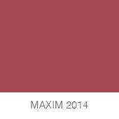 MAXIM-2014-copia1