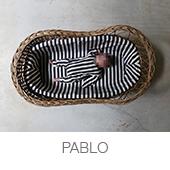 PABLO copia