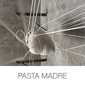 PASTA MADRE copia