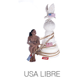 USA LIBRE copia