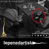 lepenedartista_limk_03