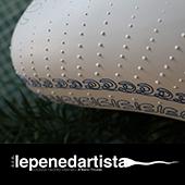 lepenedartista_calcutta