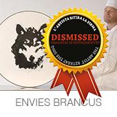 ENVIES-BRANCUS-copia