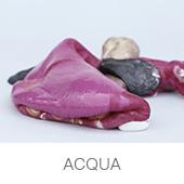 acqua_polimerica