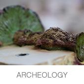 archeology_01