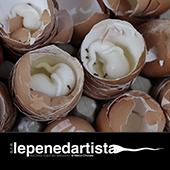 lepenedartista_favelas
