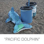 pacific_dolphin