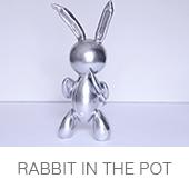 rabbitinthepot