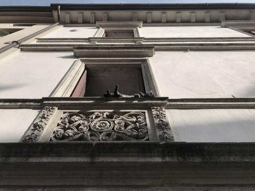 gatto_su_balcone_16