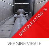 vergine_virale_01